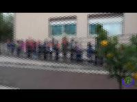 Festa dell'Albero Sede Centrale